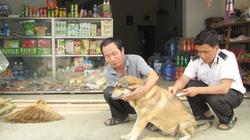 Lai Châu: Hỗ trợ tiêm phòng bệnh dại cho chó, mèo