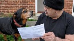 Kỳ lạ: Chú chó được mời đi bầu cử Quốc hội châu Âu