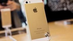 iPhone 5s, 5c khóa mạng giá rẻ tràn về Việt Nam