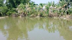 Thả lưới bắt cá, học sinh lớp 5 đuối nước chết thảm
