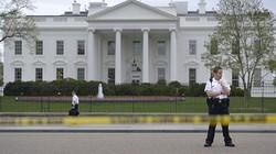 """Mật vụ Mỹ """"điên đầu"""" bắt con cáo tinh ranh """"gây rối"""" ở Nhà Trắng"""