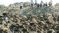Hiện tượng dị thường: Mặt ruộng đột nhiên nhô cao gần 2 mét