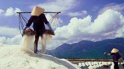 Tồn kho hơn 200.000 tấn muối