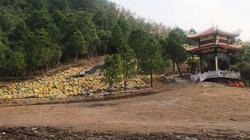Quảng Bình: Mở tuyến xe buýt vào khu mộ Đại tướng Võ Nguyên Giáp