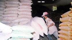 Miễn thuế VAT cho thức ăn chăn nuôi nhập khẩu