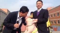 Hiệu phó hôn... lợn trước mặt học sinh