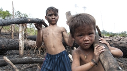 Khu rừng cháy và hai đứa trẻ