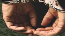 Buôn ma túy, Phó GĐ trung tâm văn hóa bị bắt