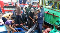 Quảng Nam: Giúp ngư dân ứng dụng công nghệ mới