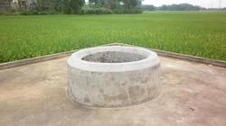 """Kỳ lạ chiếc giếng """"mọc"""" từ thân cây ở Nghệ An"""