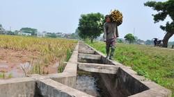 Dấu ấn sau 3 năm xây dựng nông thôn mới: Ngăn chặn  bệnh thành tích