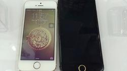 iPhone 6 dạng mô hình xuất hiện ở Hà Nội