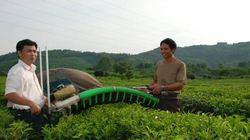 Dấu ấn sau 3 năm xây dựng nông thôn mới (Bài 10): Sẽ không chạy theo phong trào