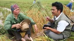 Giúp đôi vai của người nông dân đỡ nặng
