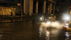 Hà Nội: Mưa dông lớn gây ngập lụt, hàng trăm cây gãy đổ
