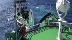 Trung Quốc huy động thêm tàu cá vỏ sắt