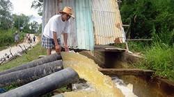 Quảng Nam: Tạm ứng 4 tỷ đồng chống hạn, nhiễm mặn