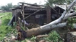 Quảng Nam: Lốc xoáy cuốn phăng hàng chục mái nhà