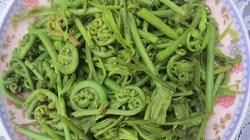 Món ngon từ loài rau choai ở U Minh