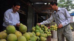Huyện Đoan Hùng (Phú Thọ): Vẫn mắc ở nhiều tiêu chí