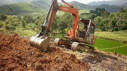 Quảng Ngãi: Làm cánh đồng mẫu cho cây mía