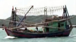 Tàu lạ đâm chìm tàu cá có tải trọng 200 tấn, sơn đen kịt