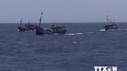 Báo quốc tế nhìn nhận thế nào khi tàu Trung Quốc đâm chìm tàu cá Việt Nam?