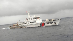 Đang lai dắt tàu cá bị tàu Trung Quốc đâm vào bờ làm bằng chứng