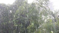 Miền Bắc mưa dông rải rác
