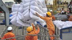 Xuất khẩu gạo sang Philipppines:Sẽ nới thời gian giao   hàng
