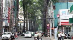 Mùa giông bão, điểm mặt các cung đường cây xanh gài bẫy