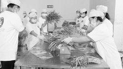 Hợp tác xã Phước An góp sức xây dựng nông thôn mới