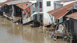 Hậu Giang: Sông Nàng Mao nuốt 8 căn nhà, hàng trăm hộ dân hoang mang