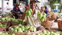 Sẽ lập ban điều phối phát triển nông sản
