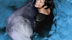 Tiết lộ gây sốc về mối quan hệ kỳ lạ giữa cá heo và con người