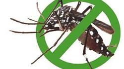 Hà Nội: Ăn canh nêm thuốc diệt muỗi, cả nhà cấp cứu
