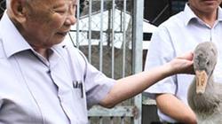 Thăm trang trại vịt trời và thuốc quý của nguyên Phó thủ tướng Nguyễn Công Tạn