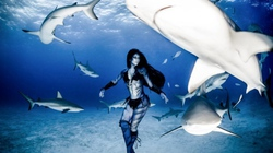 Siêu mẫu xinh đẹp diện bikini khiêu vũ với cá mập hổ