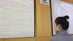 Hết sóng đầu cơ, thị trường tìm cổ phiếu cơ bản