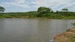 5 em nhỏ trốn nhà đi tắm sông: 3 em chết đuối