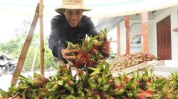 Tìm giải pháp tiêu thụ nông sản hàng hóa: Hội sẽ hành động mạnh hơn