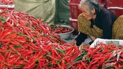 """Nông sản Việt Nam lệ thuộc thị trường Trung Quốc: Nông sản Việt """"đu trên  dây"""""""