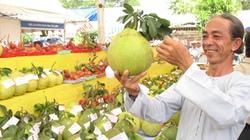 Nông sản Việt tìm cách thoát lệ thuộc Trung Quốc: Không thể hô hào suông