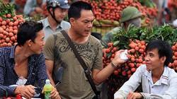 Mặc cả bằng tiếng Việt cực sõi, thương lái Trung Quốc ép giá vựa vải Lục Ngạn