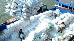 Để nông sản giảm lệ thuộc thị trường Trung Quốc: Liên kết để tạo thế chân kiềng