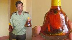 Đường dây sản xuất rượu ở Phú Yên: Phù phép rắn thường thành hổ mang