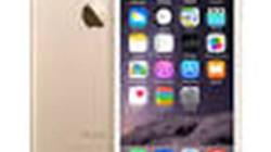 TSMC tiếp tục trúng thầu sản xuất chip cho iPhone 6C?