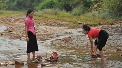 Sìn Hồ (Lai Châu): Phụ nữ tiết kiệm gạo hỗ trợ hội viên nghèo
