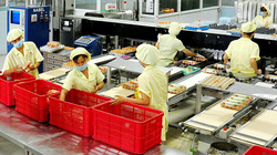 Dạy nghề cho lao động nông thôn: Còn quá nhiều lỗ hổng