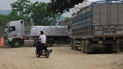 Gạo ùn ứ tại cửa khẩu: Nên ngừng xuất khẩu tiểu ngạch?